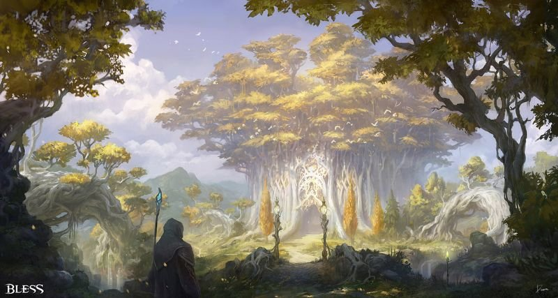 Mysterious and beautiful forest, El Gradis